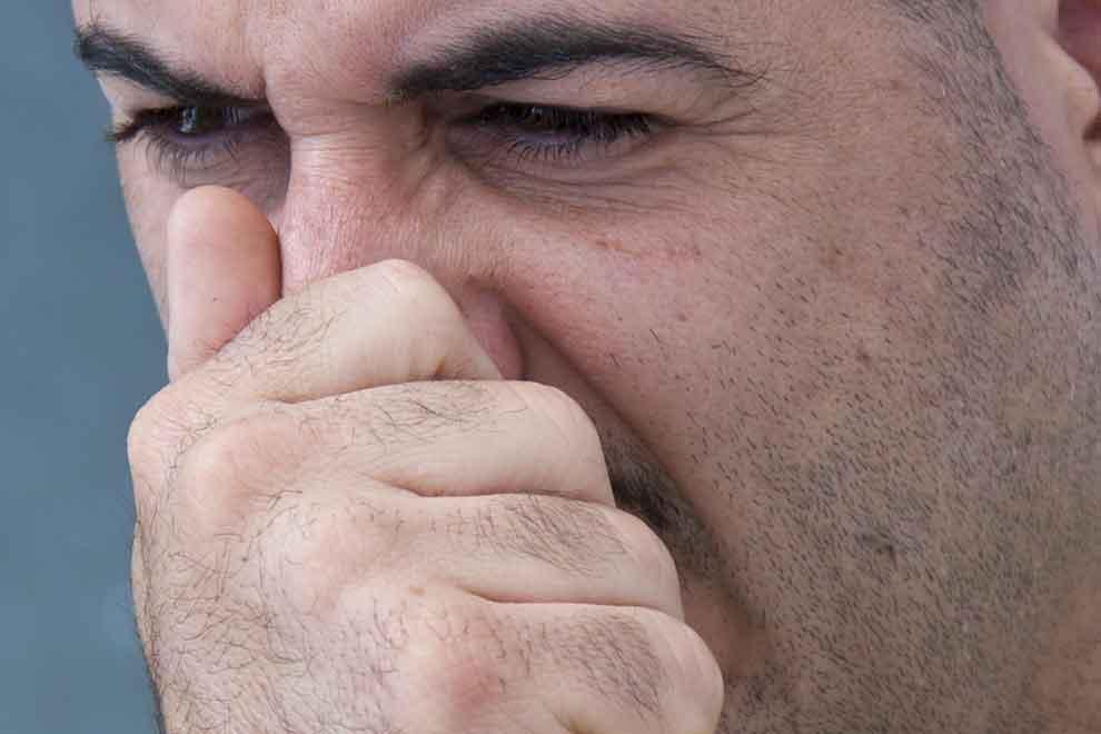 Зудит в носу