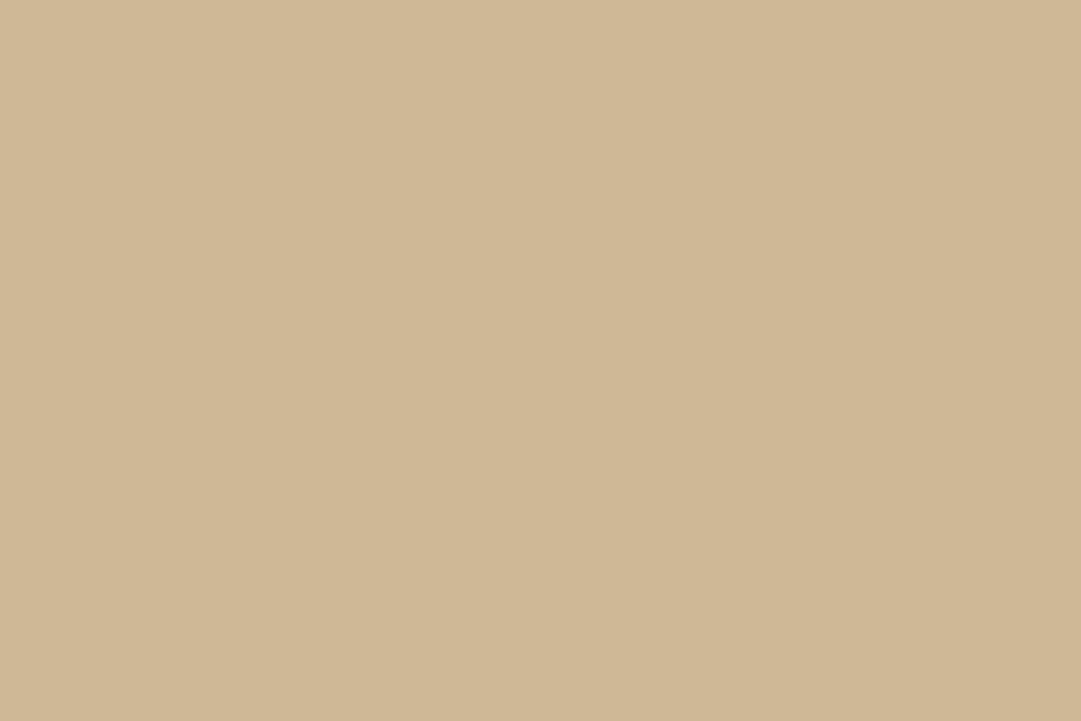 Цвет бледно-серо-желтый