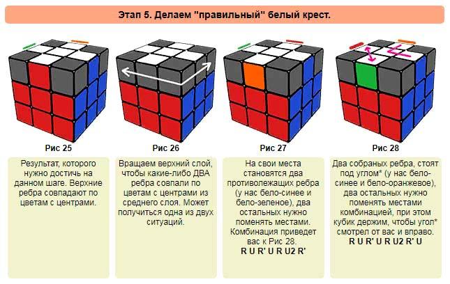 Кубик 7