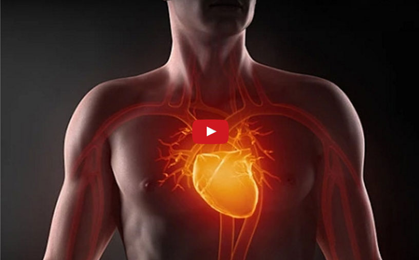Миокардиодистрофия: как лечить больное сердце