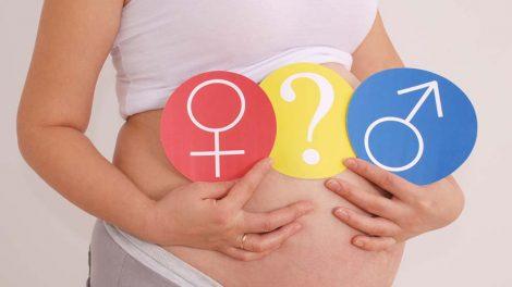 Как определить пол ребенка на раннем сроке беременности